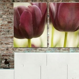 2 Piece Floral Wall Art