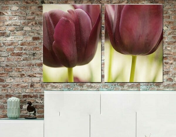 2 Piece Floral Wall Art