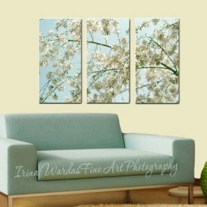 White Cherry Blossom Wall Art | 3 Piece Set | Large Canvas Art