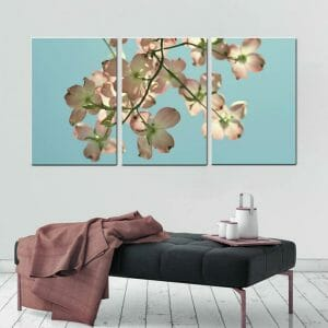 3 Piece Dogwood Flowers Wall Art