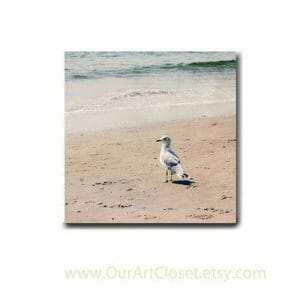 Seagull Bird Wall Art | Neutral Wall Art Decor | Coastal Bath Wall Art