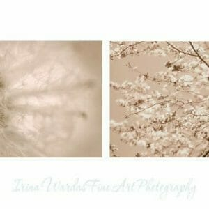 Beige Pastel Botanical Wall Art | Cream Bedroom Wall Decor Print