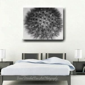 Large Black and White Dandelion Canvas Wall Art