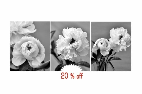 Black and White Peony Wall Decor | Vertical Shabby Chic Floral Wall Art