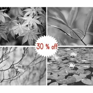 Black and White Branch Wall Art | Botanical Leaf Wall Art Print Set of 4