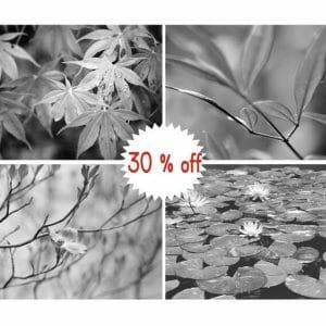 Black and White Branch Wall Art | Botanical Leaf Wall Art Print Set of 4