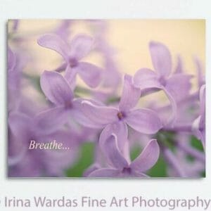 Lilac Floral Wall Art