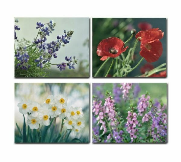 4 Piece Floral Canvas Wall Decor | Poppy Wall Art | Narcissus Wall Art