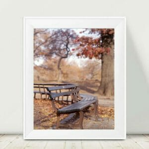 Central Park Bench Wall Art | Copper Wall Art | New York City Wall Decor