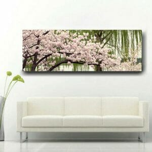 Panoramic Cherry Blossom Tree Wall Art