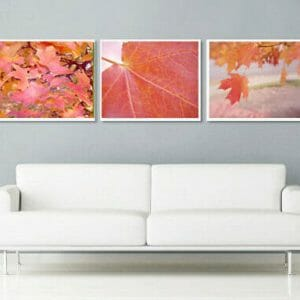 3 Piece Botanical Wall Art