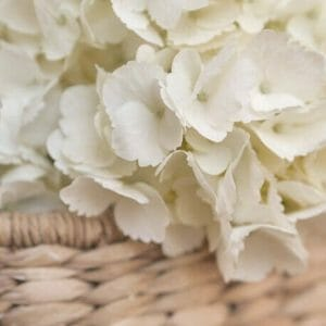 Ivory Floral Wall Decor | Country Chic Decor | Hydrangea Wall Art