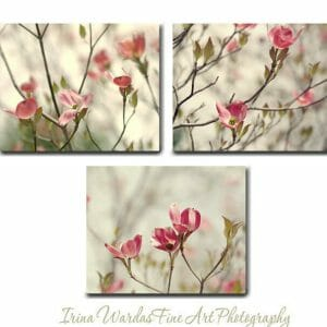 3 Piece Dogwood Tree Branch Wall Art