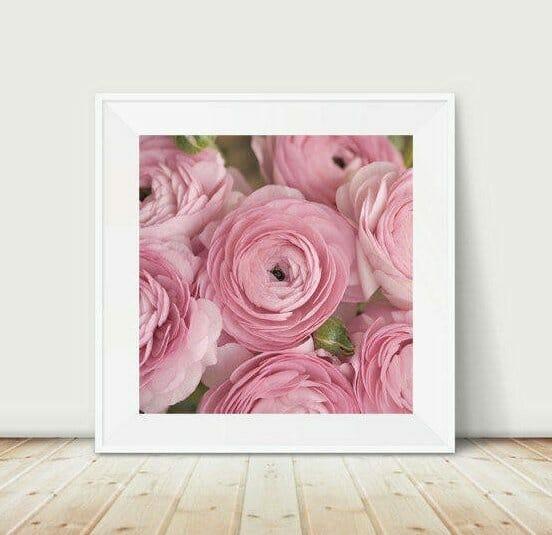 Pink Flower Wall Art | Ranunculus Wall Decor | Girls Room Decor
