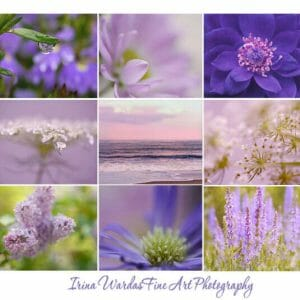 9 Piece Floral Wall Art Set | Lavender Nature Wall Art