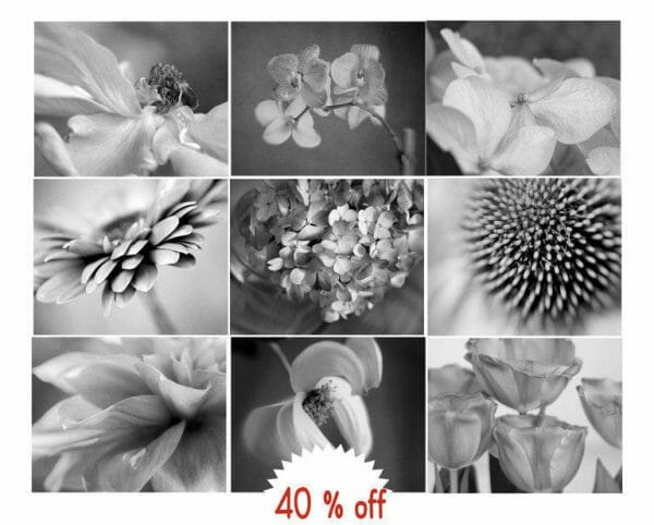 Black and White Floral Wall Decor Set of 9
