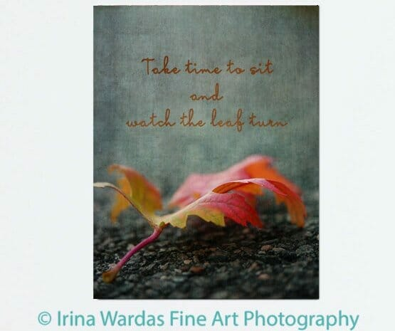 Inspirational Quote Wall Decor | Autumn Leaf Wall Art | Canvas Wall Decor