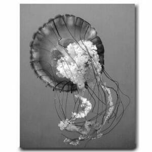 Ocean Wall Decor | Jelly Fish Wall Art | Grey Bathroom Wall Decor