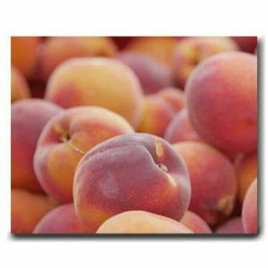 Peach Fruit Wall Art | Kitchen Wall Decor | Large Canvas Wall Art