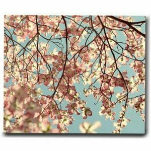 Dogwood Tree Branch Wall Art