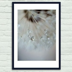 Dandelion Flower Wall Decor | Bathroom Floral Wall Art
