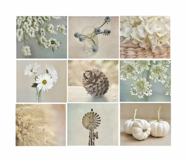 Shabby Chic Rustic Wall Art Collection   Set of 9 Prints