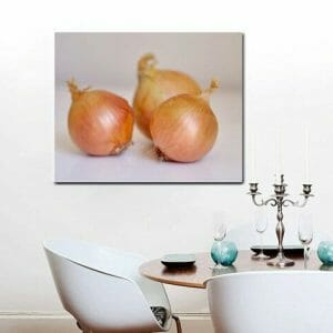 Onion Vegetable Wall Decor | Kitchen Wall Art | Restaurant Wall Art