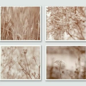 4 Piece Nature Wall Decor Set