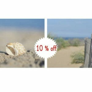 Beach Wall Decor | Coastal Wall Art | Beach Dunes and Seashell Wall Art