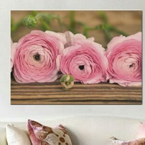 Ranunculus Wall Art | Oversized Canvas | Rustic Shabby Chic Wall Decor