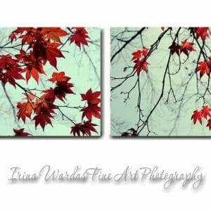 Red and Mint Leaves | Maple Tree Branch Wall Art | Canvas Set of 2
