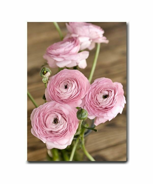 Vertical Floral Wall Art | Extra Large Floral Wall Decor | Ranunculus Flower