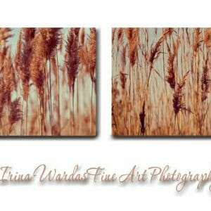 Beach Grass Wall Decor
