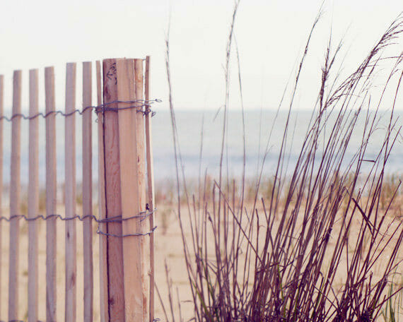 Beige Grey Purple Grass Fence | Large Coastal Wall Art | Nautical bathroom Decor