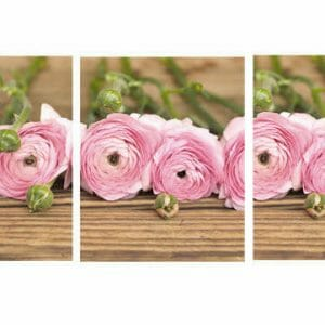 Triptych Floral Wall Art | Ranunculus Wall Decor | Pink Shabby Chic Decor