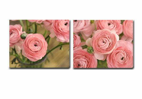 Ranunculus Wall Art Set of 2 | Coral Pink Floral Rustic Wall Decor