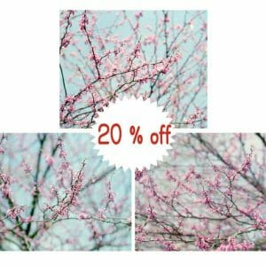 Cherry Blossom Tree Branch Wall Art
