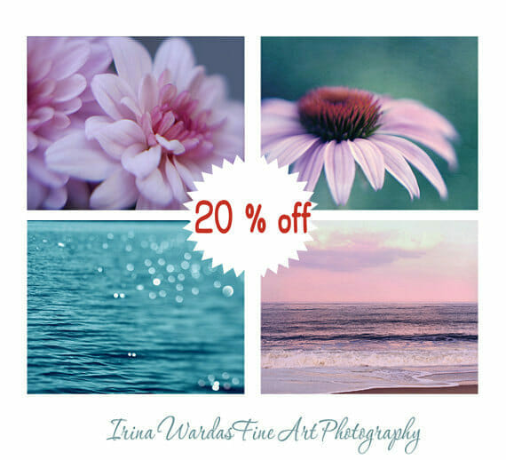 4 Piece Nature Wall Art | Teal and Pink Nature Photography Wall Art