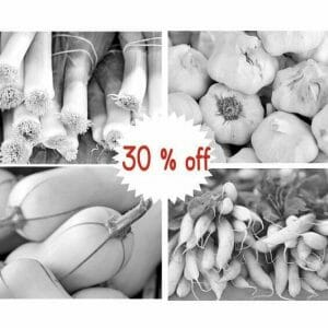 Black and White Vegetable Wall Art Set