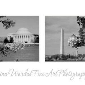 Black and White DC Wall Art | Washington DC Monuments Wall Art