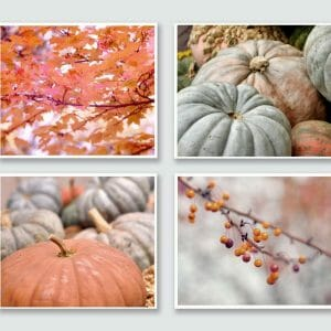 Autumn Pumpkins and Leaves Photography | Rustic Wall Art Set of 4
