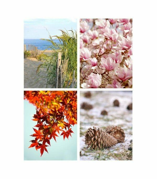 Season Wall Art Set of 4 Prints | Vertical Nature Photography | Seasonal Wall Decor